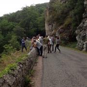 Sortie-Fougères avec le CEN Auvergne à Menat (63)