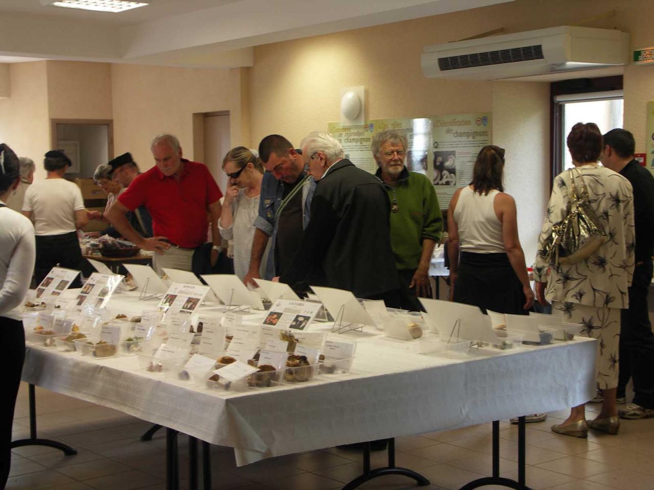 Exposition La Chapelle-Geneste 15 août 2011