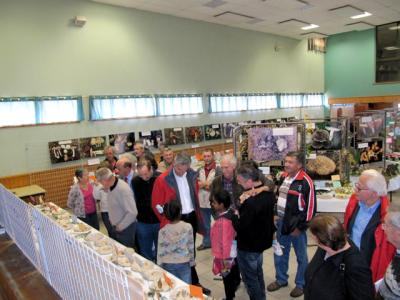 Exposition Laussonne 16 octobre 2011