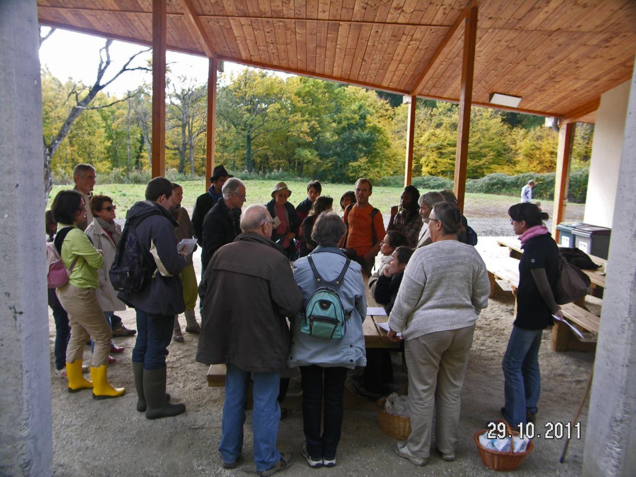 Sortie Forêt de La Comté 29 octobre 2011
