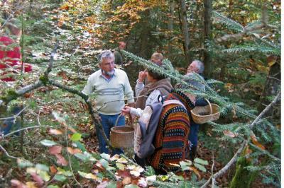 Sortie Forêt de la Comté 18 octobre 2010