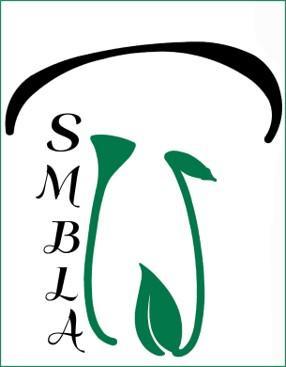 Logo cadre